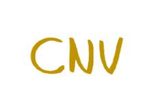 CNV Suisse