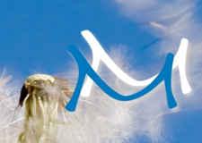 Mindfulness Medicine